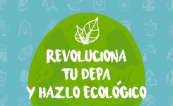 Revoluciona tu depa y hazlo ecológico