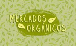 Conoce estos increíbles mercados orgánicos en Monterrey