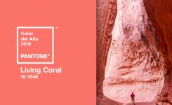 5 maneras de utilizar el Color del Año 2019 de Pantone